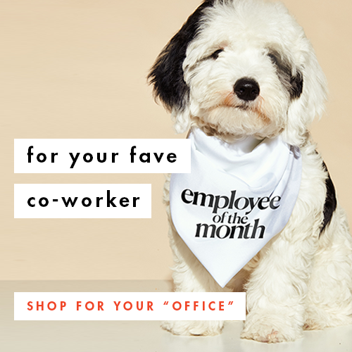 For Your Fave Co-worker; Shop for Your Office!