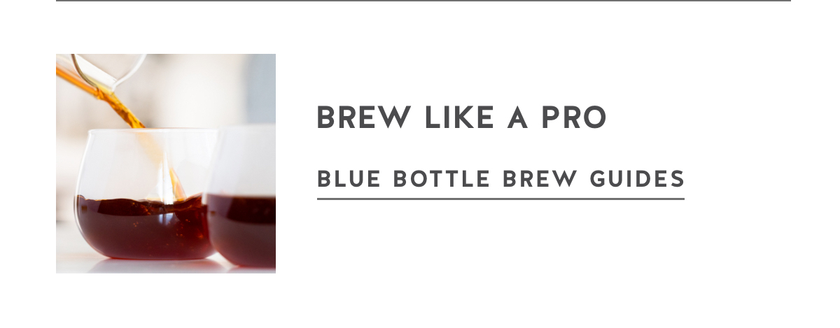 Brew like a pro. Blue Bottle Brew Guides.