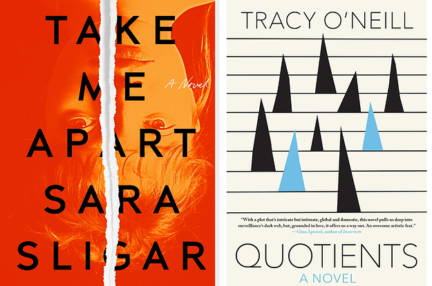 Book covers: Take Me Apart; Quotients