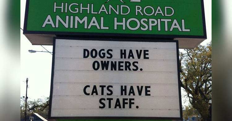sign reading ''Dogs have owners. Cats have staff.''